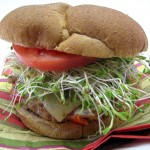 Garden Turkey Burgers So Good You Won't Miss the Beef