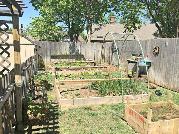 Overall Garden