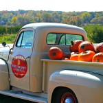 A Michigan Cider Mill Day