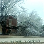 Oklahoma Ice Storm April 2013 – Life and Limbs