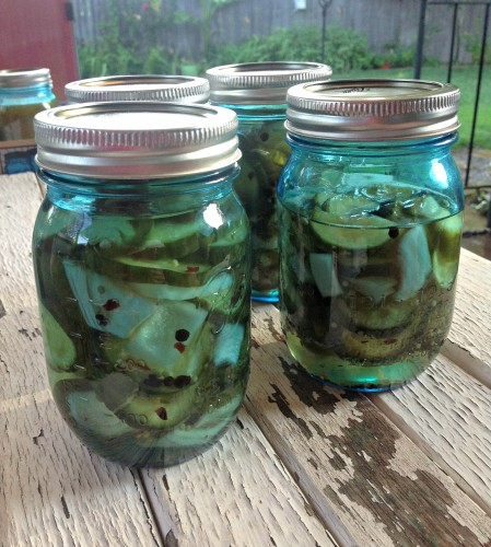 sweet n spicy bread and butter pickles