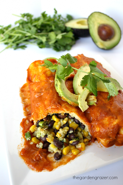 blackbeanavocadoenchilads3