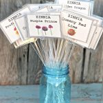 DIY Garden Markers That Last