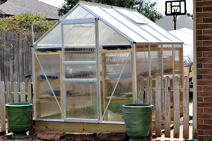 How to Plant in a Greenhouse -Dishin & Dishes